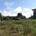 Kern Center: Greywater-nutient recycling bed